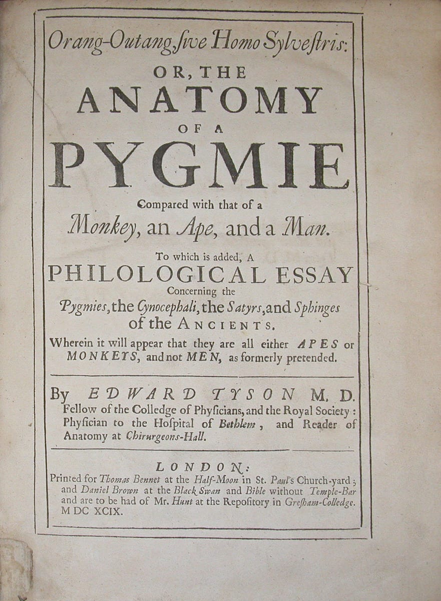 Recently, the John Martin Rare Book Room acquired a rare copy of Edward Tyson's 1699 book, Orang-outang, sive, Homo sylvestris, or, The anatomy of a pygmie compared with that of […]