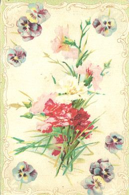 Floral postcard, 1910s | Noble Photographs