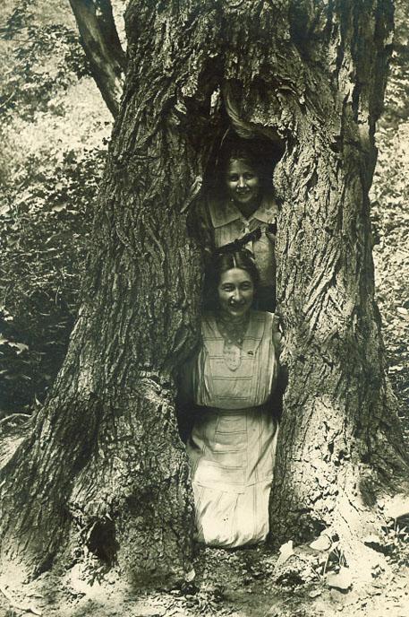 Women inside tree, Iowa City, Iowa (1910s) | Mary Noble Collection