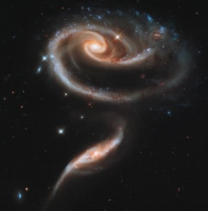 The Rose of Galaxies