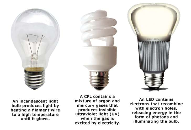 light-bulb-types