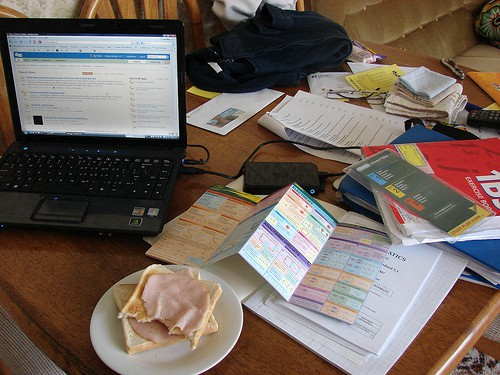 picture of study area