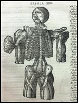 Mikrokosmographia by Helkiah Crooke