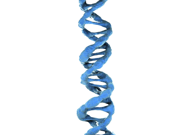 image of blue dna strand