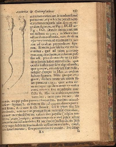 sperm in 1700s book