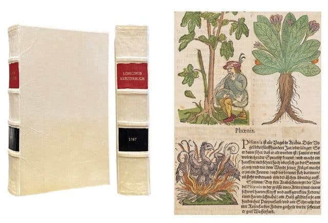 image of book bound in vellum and page with phoenix plant, man eating it and vomiting