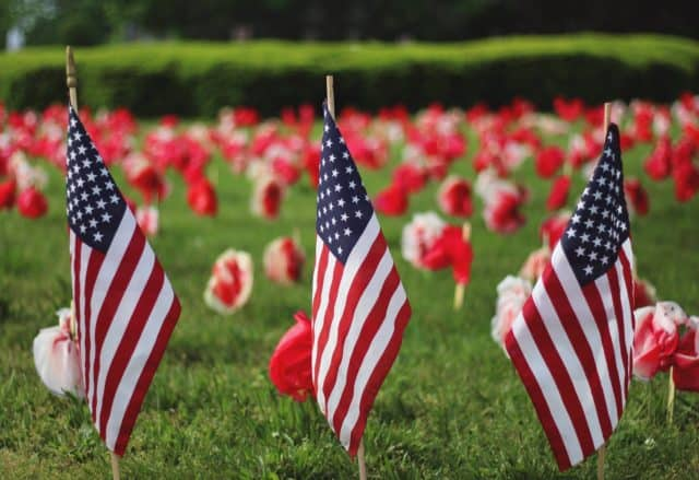 American flags and paper poppies in grass field, possibly cemetary