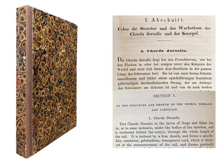 image of binding and page from book