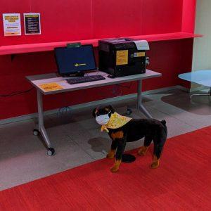 wulfie standing near the printer