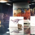 Halloween Dinosaur Display - Top Shelf