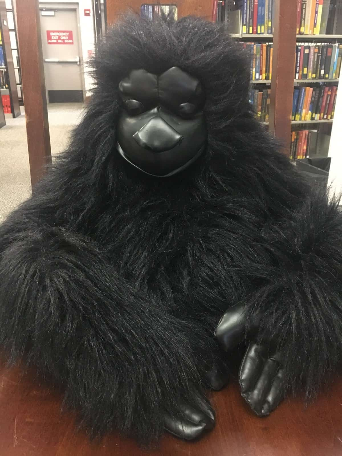 Chauncey, the Sciences Library mascot