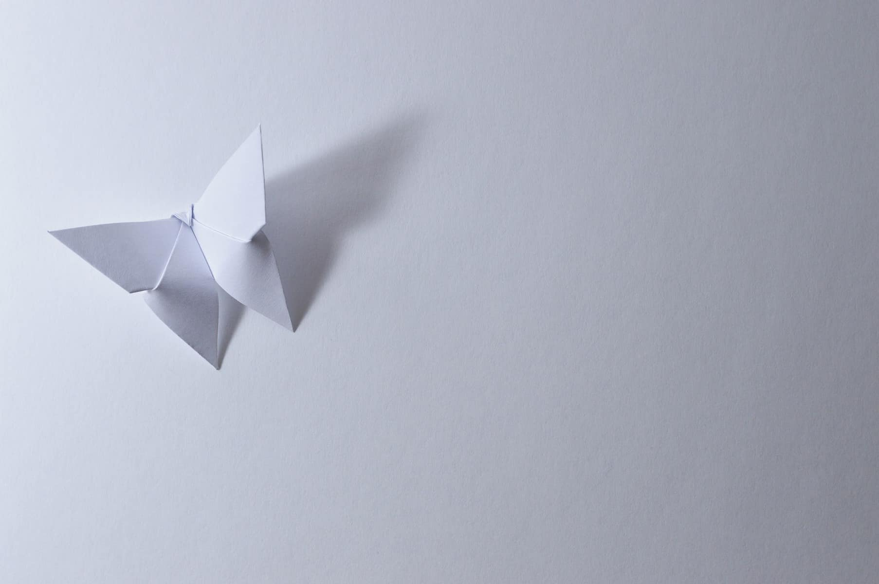 Origami: A Blend of Art and Mathematics That Advances Science – Sciences Library News - photo#25
