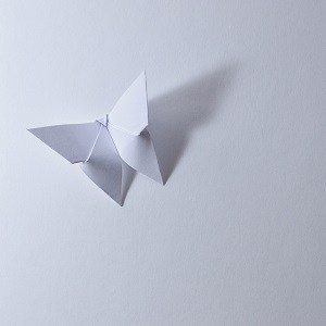 WhiteOrigamiButterfly
