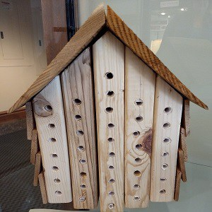 Picture of wooden bee house