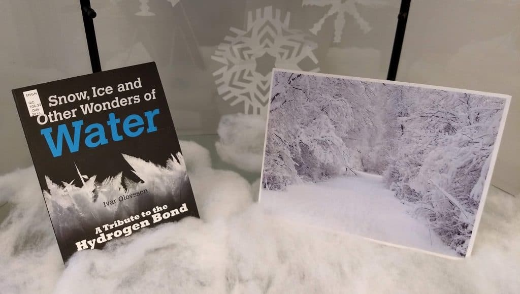 Picture of book and IC winter