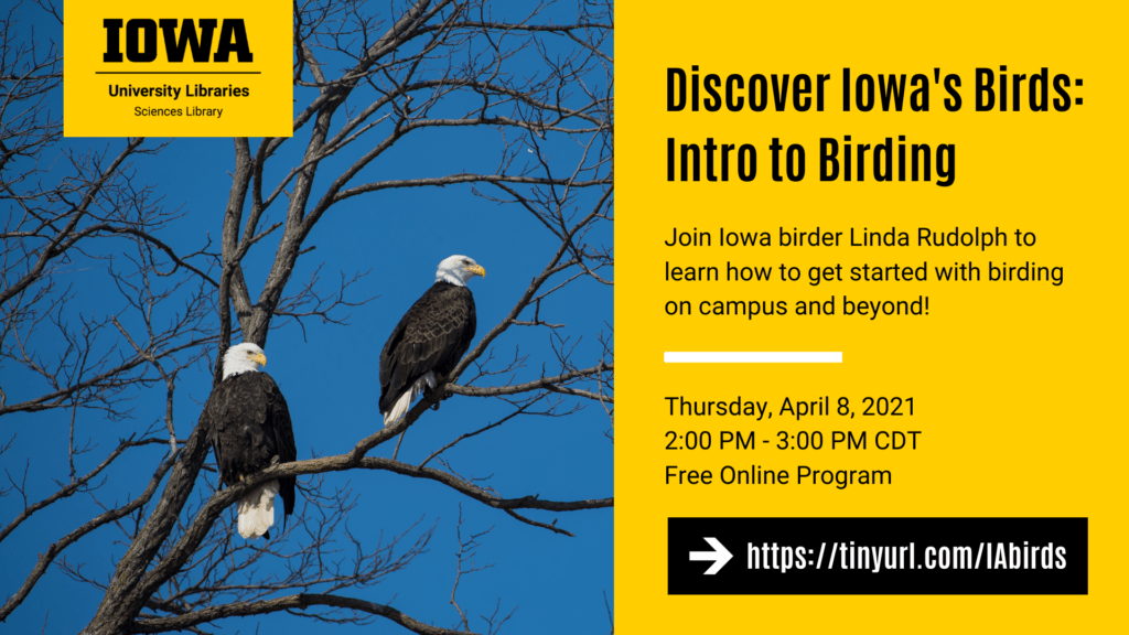 Discover Iowa's Birds: Intro to Birding. Join Iowa birder Linda Rudolph to learn how to get started with birding on campus and beyond! Thursday, April 8, 2021. 2:00 PM - 3:00 PM CDT. Free Online Program. https://tinyurl.com/IAbirds