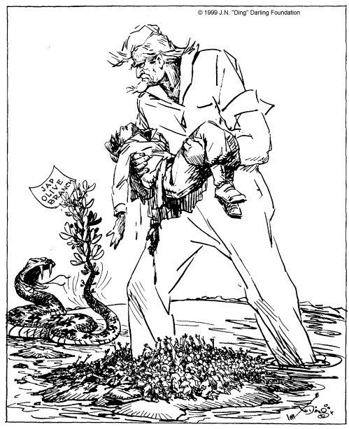 J. N. Darling cartoon