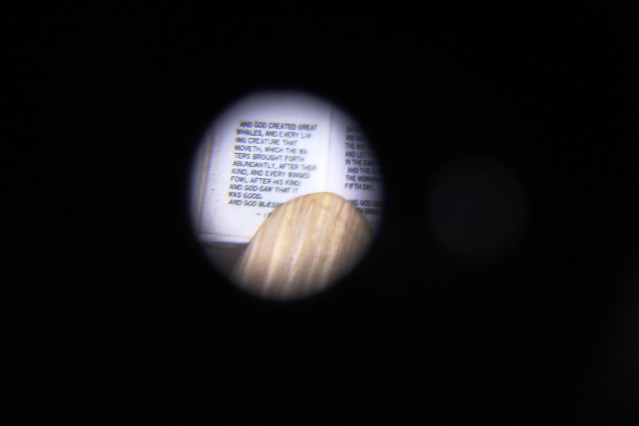 Text viewed under the microscope
