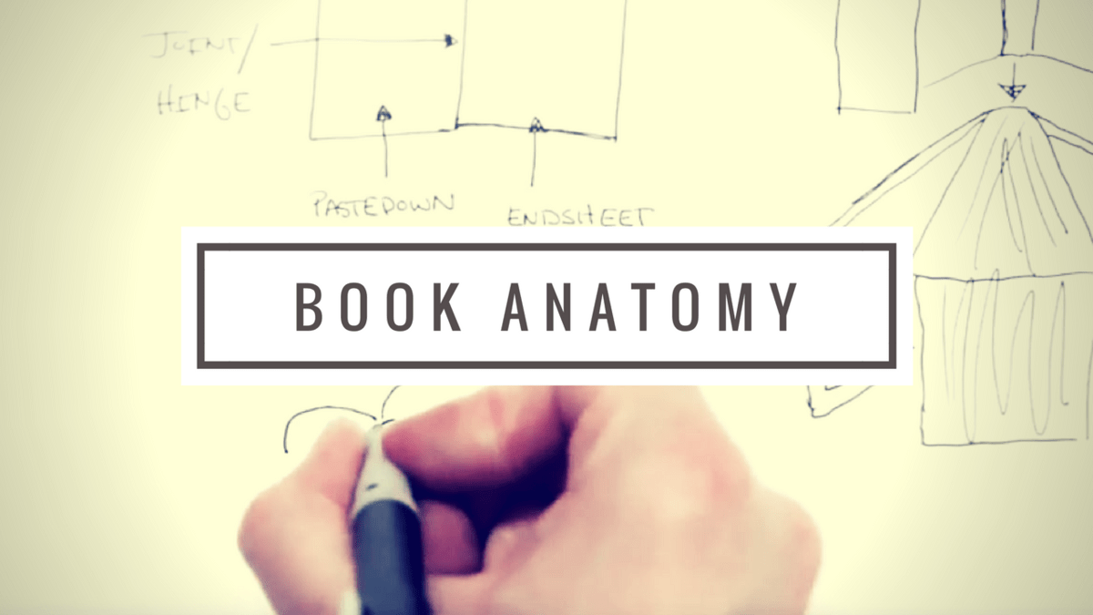 book anatomy