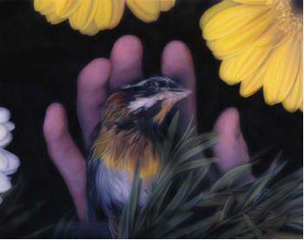 Bird on hand by Tilly Woodward, 2006 | The Daily Palette Digital Collection
