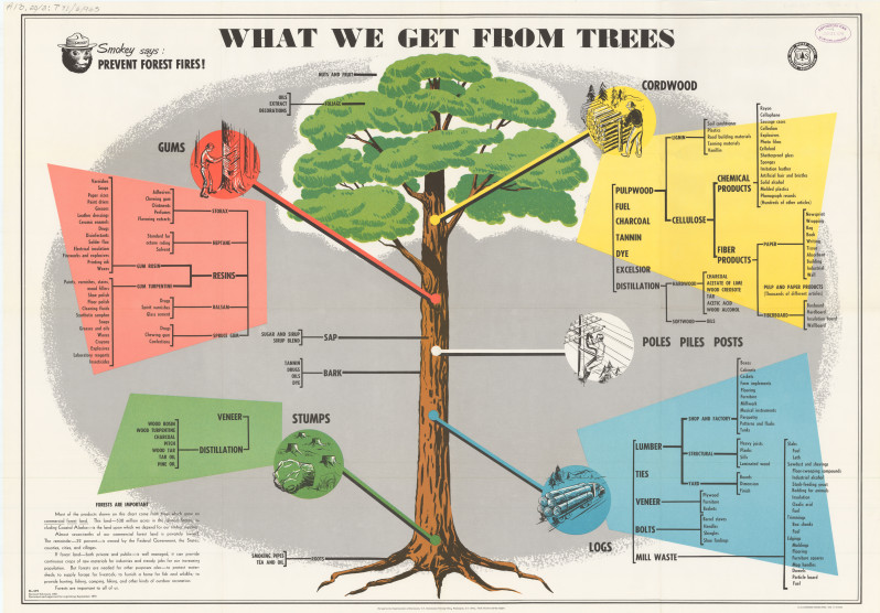 What we get from trees (1978) | U.S. Government Posters Collection