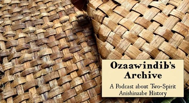 Ozaawindib's Archive Banner